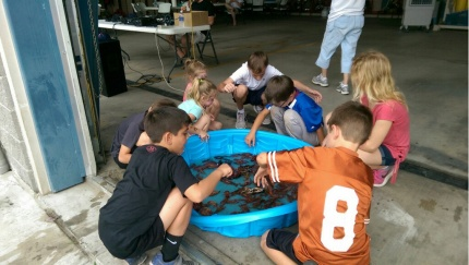 Crawfish Pool!